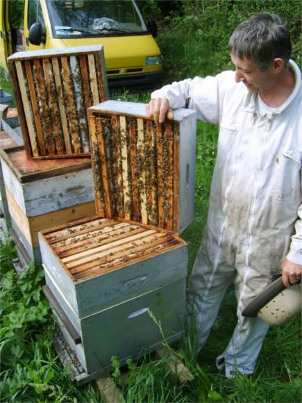 jean francois verjsu aux ruches